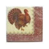 DesignWare Thanksgiving Turkey Napkins Coupons