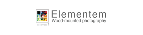 Elementem Photography coupons